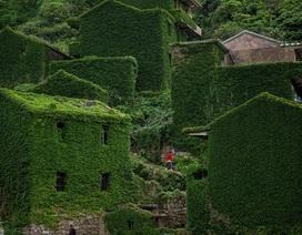 """Ngôi làng bỏ hoang bất ngờ gây """"sốt"""" bởi những nhà cây đẹp mê mẩn như cổ tích"""