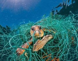 Đến 2030, dừng vứt bỏ dụng cụ khai thác thủy sản trực tiếp xuống biển