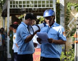 Vụ Tràm Chim Resort: Cưỡng chế 4 hành vi vi phạm