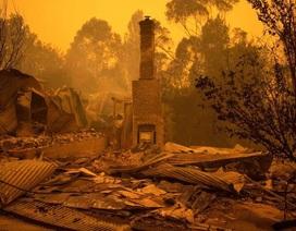 Cháy rừng chết chóc ở Úc chưa có dấu hiệu dừng lại