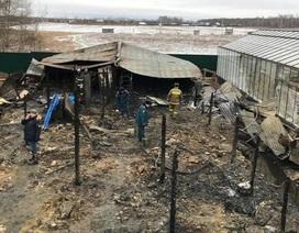 Cháy tại tỉnh Moscow khiến 8 người thiệt mạng, nghi có người Việt