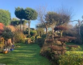 Khu vườn nhỏ thiết kế tuyệt đẹp: Mất 45 năm chăm sóc, thu hút 10 nghìn du khách mỗi năm