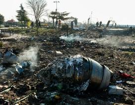 Ukraine không loại trừ máy bay chở 176 người rơi do bị tấn công