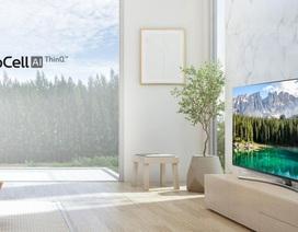 Những mẫu TV 55 inch đáng mua Tết 2020