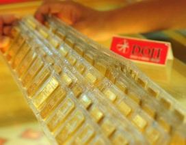 Giá vàng dự báo còn tăng cao trong tuần này