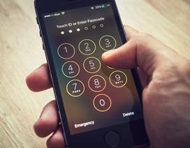 Đã từng bị từ chối, FBI lại nhờ Apple mở khóa iPhone thủ phạm xả súng