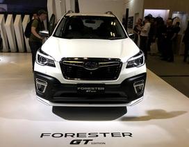 Subaru chính thức giới thiệu Forester GT và thế hệ động cơ e-Boxer mới