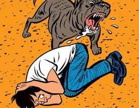 """""""Chó cưng"""" tấn công người - những câu chuyện kinh hãi sởn da gà!"""