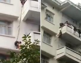 Trung Quốc: Ông bà dùng dây thòng lọng thả cháu xuống ban công cứu… mèo