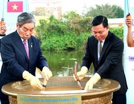Nhật Bản tặng giống sen quý cho Quảng Nam