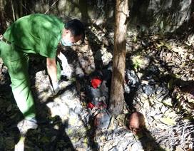 Vụ phát hiện 9 hài cốt ở Tây Ninh: Chưa có dấu hiệu án mạng giết người