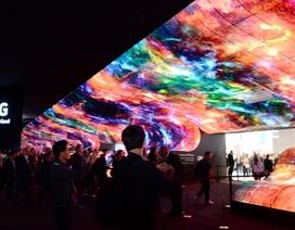Thành công của TV OLED khẳng định xu hướng Organic trong công nghệ
