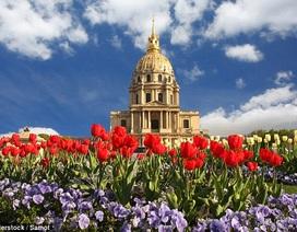 Vì sao nên đến Paris vào mùa xuân?