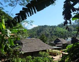 Độc đáo ngôi làng người Thái cổ nằm lọt thỏm giữa rừng ở Nghệ An