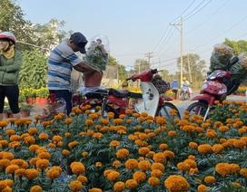 Hàng trăm người giúp đỡ người chồng mất vợ trên đường đi bán hoa Tết