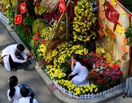 Ngắm đường hoa xuân rực rỡ trong khuôn viên bệnh viện