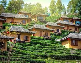 Ngôi làng ẩn hiện trong mây, nằm giữa đồi chè đẹp như cổ tích ở Thái Lan