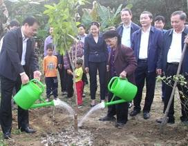 Bộ trưởng Bộ Nông nghiệp trồng cây ăn quả tại nhà cụ bà xin thoát nghèo