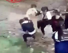Hai nhóm nữ sinh cấp 3 đánh nhau, một nữ sinh phải nhập viện
