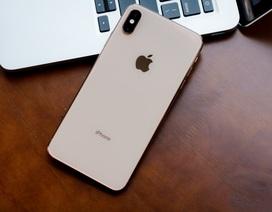 Apple mở bán iPhone Xs tân trang, giá rẻ hơn đáng kể so với hàng mới