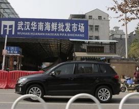 """""""Mầm mống"""" dịch bệnh lạ từ chợ động vật hoang dã Trung Quốc"""