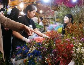 Chợ hoa nổi tiếng nhất Hà Nội nhộn nhịp xuyên đêm 29 Tết