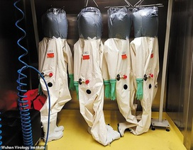 Rộ nghi vấn vi rút viêm phổi lạ thoát ra từ phòng thí nghiệm Trung Quốc