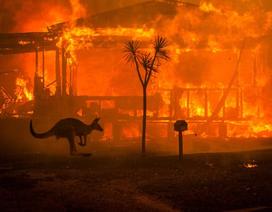 Biến đổi khí hậu đang đe dọa hơn một nửa GDP thế giới