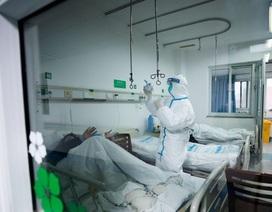 Chuyên gia Hong Kong ước tính gần 44.000 người nhiễm virus corona ở Vũ Hán