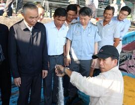 Thứ trưởng Bộ Nông nghiệp lên tàu thăm ngư dân ngày đầu năm mới