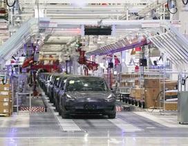 Vừa xuất xưởng chiếc xe đầu tiên tại Trung Quốc, Tesla bị yêu cầu đóng cửa nhà máy vì dịch Corona