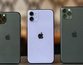 Bị chê cười khi mới ra mắt, iPhone 11 vẫn giúp Apple đạt doanh thu kỷ lục