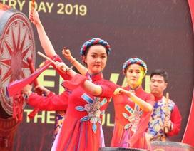 """E ngại dịch corona, """"Ngày thơ Việt Nam 2020"""" bị hoãn vô thời hạn"""