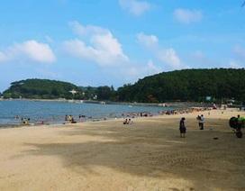 Cát Hải, Đồ Sơn tạm dừng đón khách Trung Quốc
