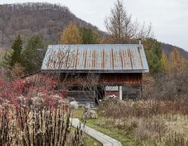 """Người đàn ông cải tạo chuồng bò thành ngôi nhà """"ai cũng muốn sống"""" ở ngoại ô thơ mộng"""