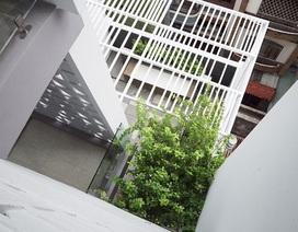 Nhà phố nhỏ hẹp ở Sài Gòn siêu sáng tạo, đẹp hút hồn