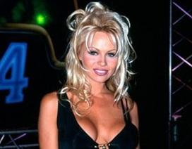 12 ngày sau đám cưới, Pamela Anderson chia tay chồng