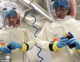 Nhà khoa học bác giả thuyết virus corona thoát ra từ phòng thí nghiệm Trung Quốc