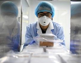 Phát hiện biến đổi gen khó lường của virus corona khi lây từ người sang người