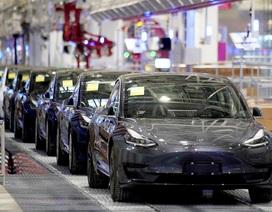 Xe Tesla sẽ dùng pin do Trung Quốc sản xuất