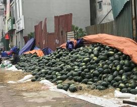 """Trung Quốc """"đóng cửa"""" vì dịch cúm, dưa hấu siêu rẻ, bán la liệt ở vỉa hè Hà Nội"""