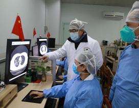 Trung Quốc: Virus corona xuất phát từ loài dơi