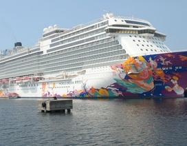 Thủy thủ tàu World Dream có triệu chứng nhiễm virus corona
