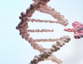 Tiến bộ trong kỹ thuật chỉnh sửa gen chống ung thư
