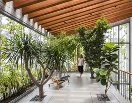 Nhà 3 tầng ở Sài Gòn khiến báo Tây bất ngờ vì đẹp như rừng nhiệt đới