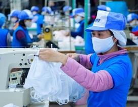 """Hưởng ưu đãi thuế nhập nhưng """"ôm"""" hàng khẩu trang xuất khẩu có thể bị phạt?"""