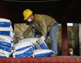 Các doanh nghiệp Trung Quốc lao đao vì virus corona