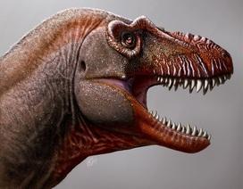 """Phát hiện loài """"khủng long thần chết"""" anh em họ của T. rex ở Canada"""