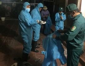 Cúm A/N5N6 tiếp tục lây lan, tiêu hủy hơn 37.000 con gia cầm