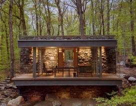 Ngôi nhà kính nằm lơ lửng giữa sườn đồi, mở cửa ra là rừng cây xanh mát